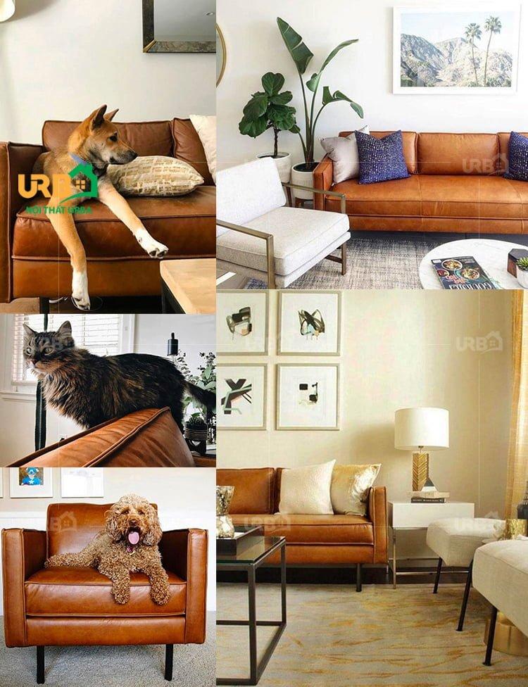 ghế sofa mã 038 Màu sắc bắt mắt, đa dạng