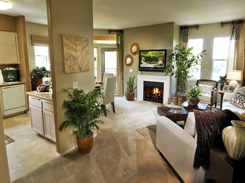 Không rời mắt với thiết kế nội thất phòng khách hướng thiên nhiên 7