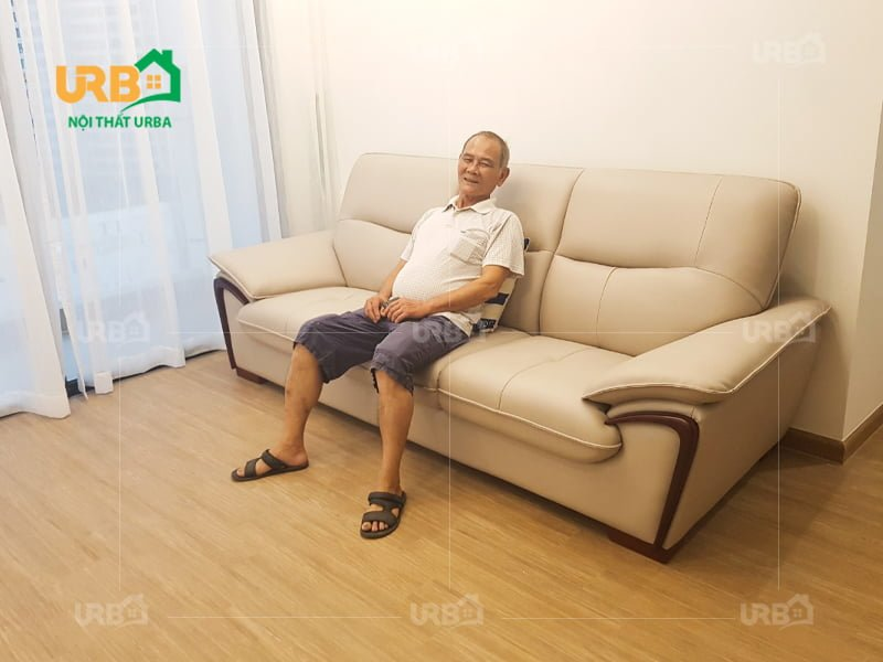 Sofa cao cấp cs 8042 1