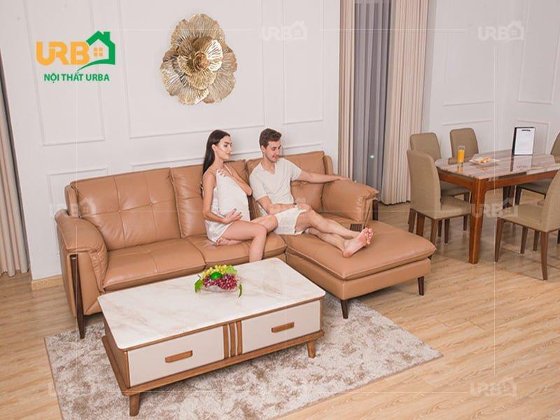Giải đáp thắc mắc nên mua sofa nỉ hay da tốt hơn ?2